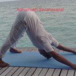 yoga-for-ocd